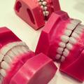 武田久美子のセラミック歯は1本12万! 金がなくても白い歯になる方法