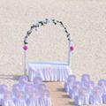 人間の本性がここで見えてくる! 台風で結婚式に行けない時、どうすべき?
