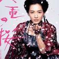 『八重の桜』低視聴率で、綾瀬はるか側が「会見出ない」のトンデモ要求!?