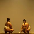 富士山噴火は九重親方とグルコサミン次第だった!? 相撲と災害の奇妙なシンクロ