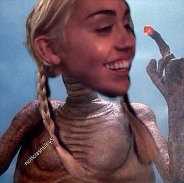 Mileycolla13-360.jpg
