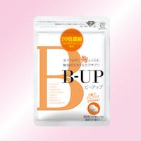 bup_09.jpg