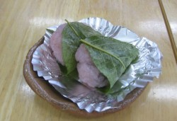 kadokawa83.jpg