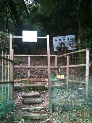 matsuotaisha2-10.jpg