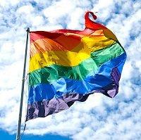 rainbowflag1_mini.jpg