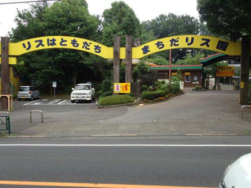 risu001.jpg