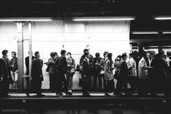 train0424cw.jpg