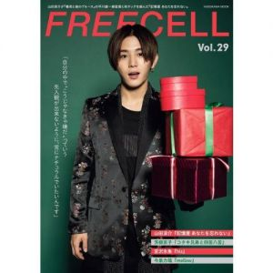 FREECELL  29