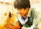 『ひまわりと子犬の7日間 [DVD]』