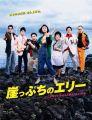 『崖っぷちのエリー ~この世でいちばん大事な「カネ」の話 DVD-BOX』