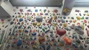 bouldering1_mini.jpg