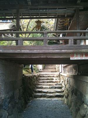 matsuotaisha2-1.jpg