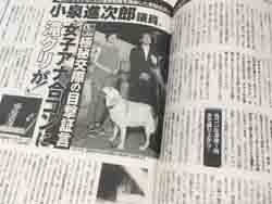 スキャンダル 小泉 進次郎 小泉孝太郎の母親宮本佳代子の離婚理由が恐ろしい。末弟宮本佳長がきっかけで再会?